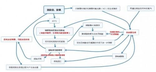 依达拉奉右莰醇(先必新)上市给中国脑卒中患者带来新希望